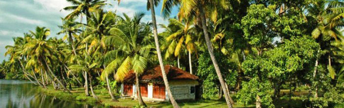 kerala-tours-from-ahmedabad